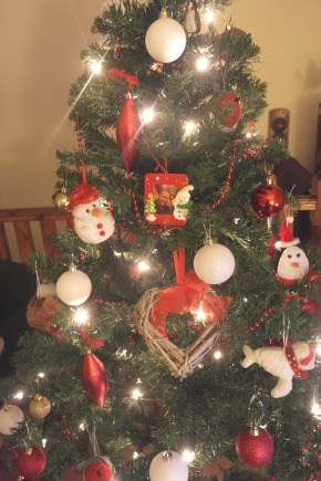 The Christmas Tree, Panettone, Gingerbread Candles & Roses (lots of roses)…